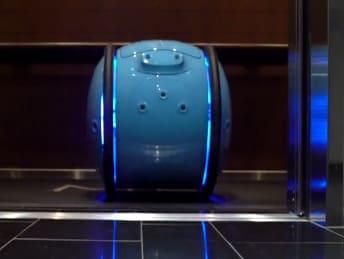 Robot Gita te lleva las bolsas de la compra