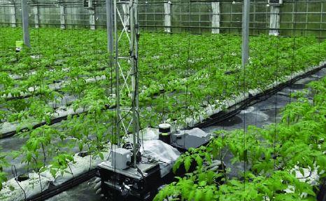 El vehículo robotizado agrícola GreenPatrol realizado en el País Vasco